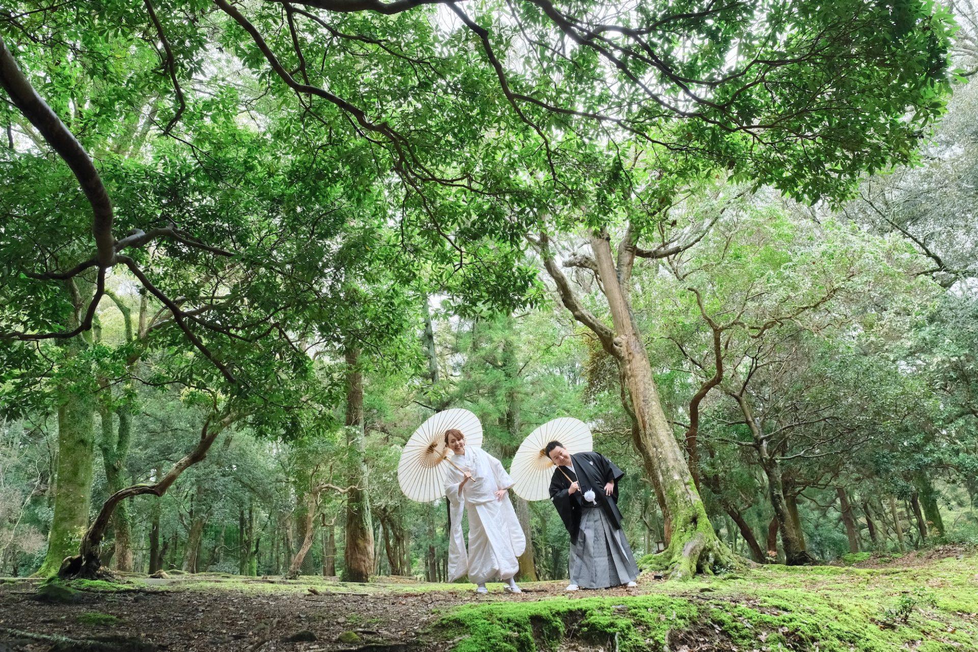 和装前撮りフォトウエディングの花嫁の写真