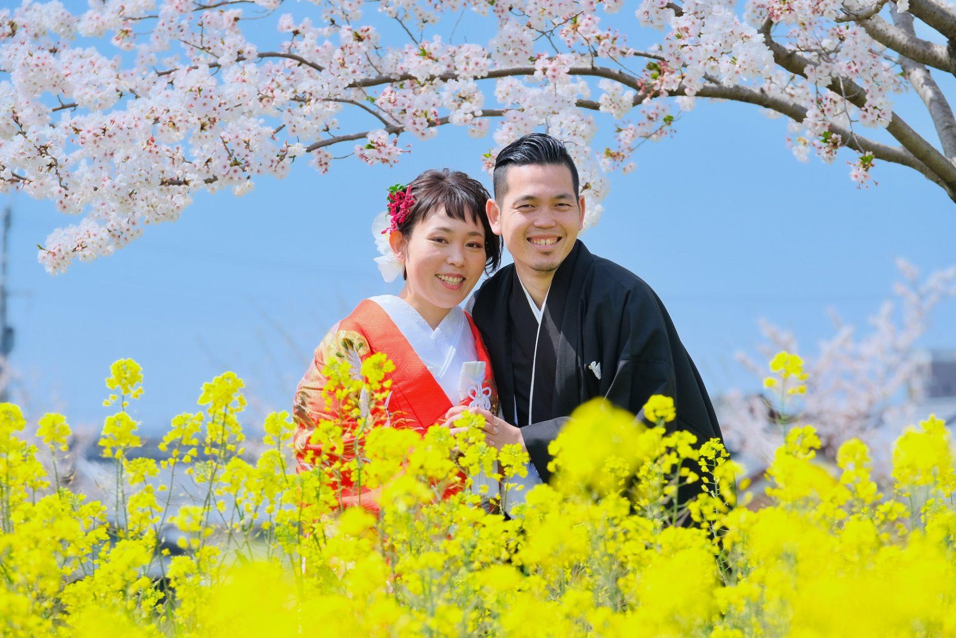 菜の花と桜で前撮りフォトウエディング