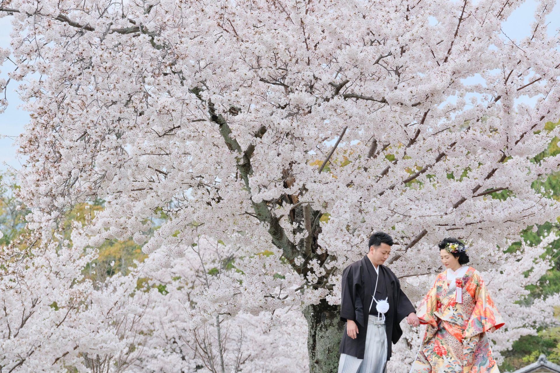 結婚式の和装の前撮りフォトウエディングの写真