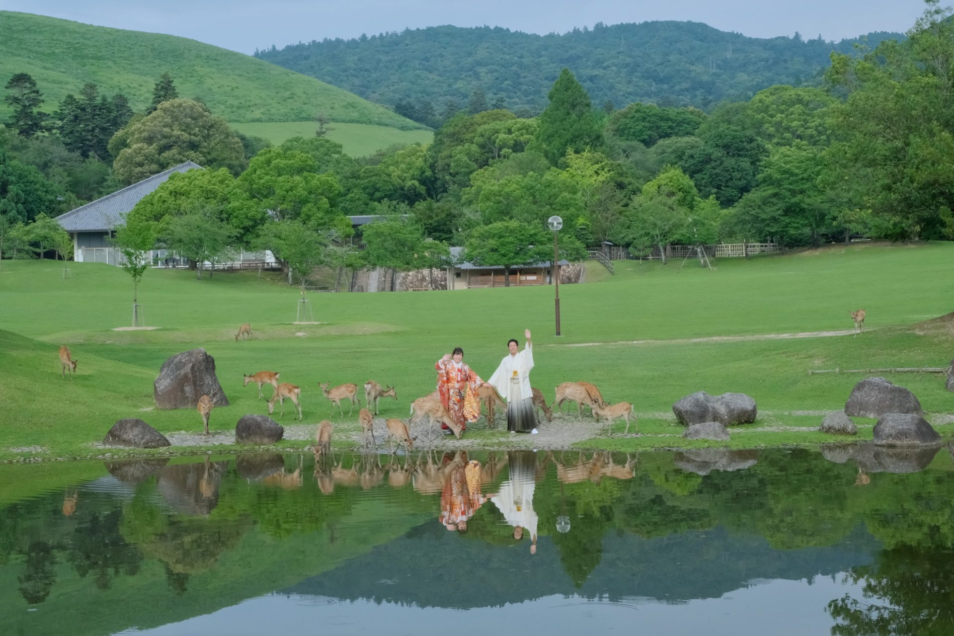 奈良公園の和装前撮りの衣装