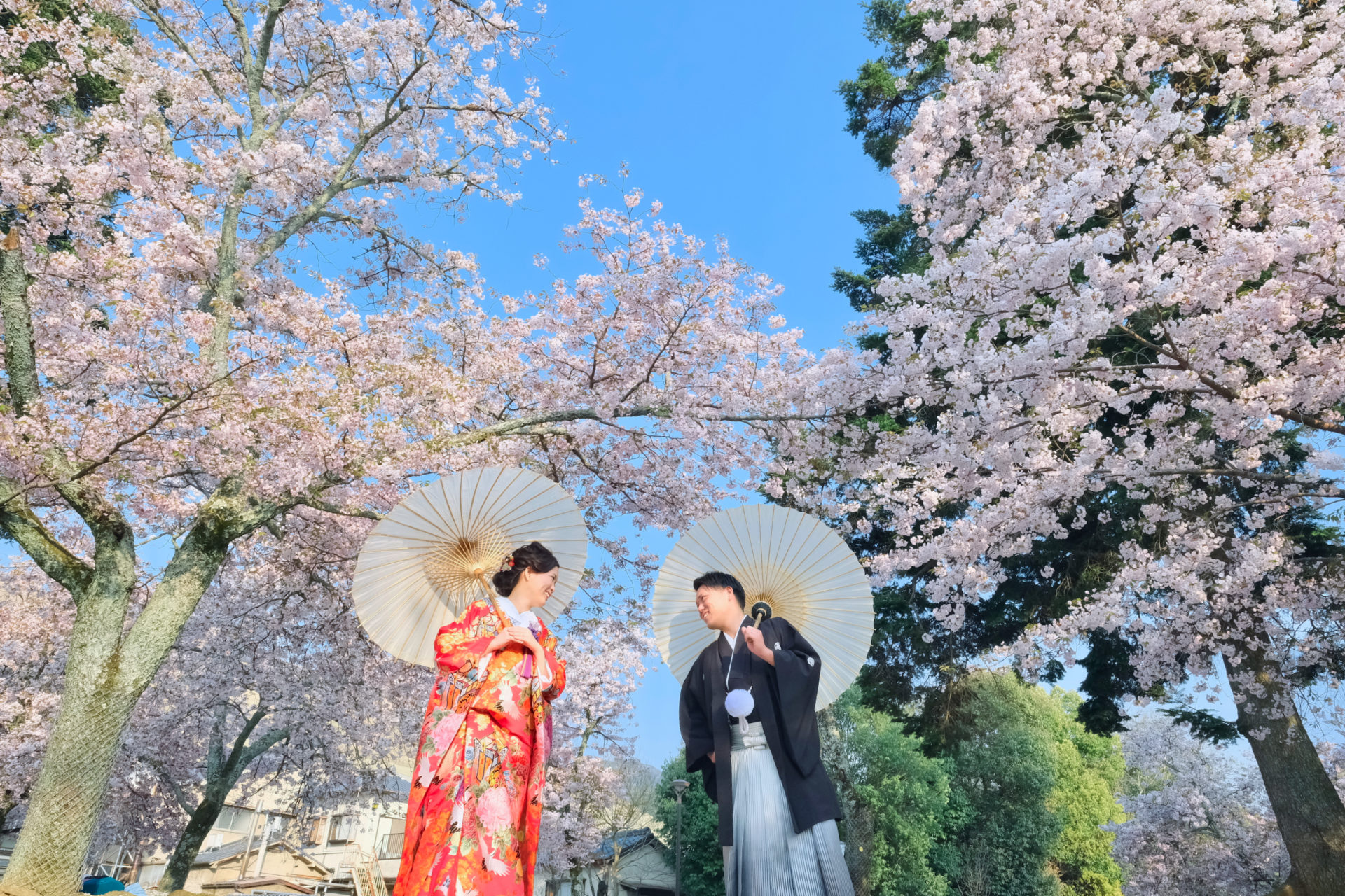 奈良公園で和装の前撮り写真
