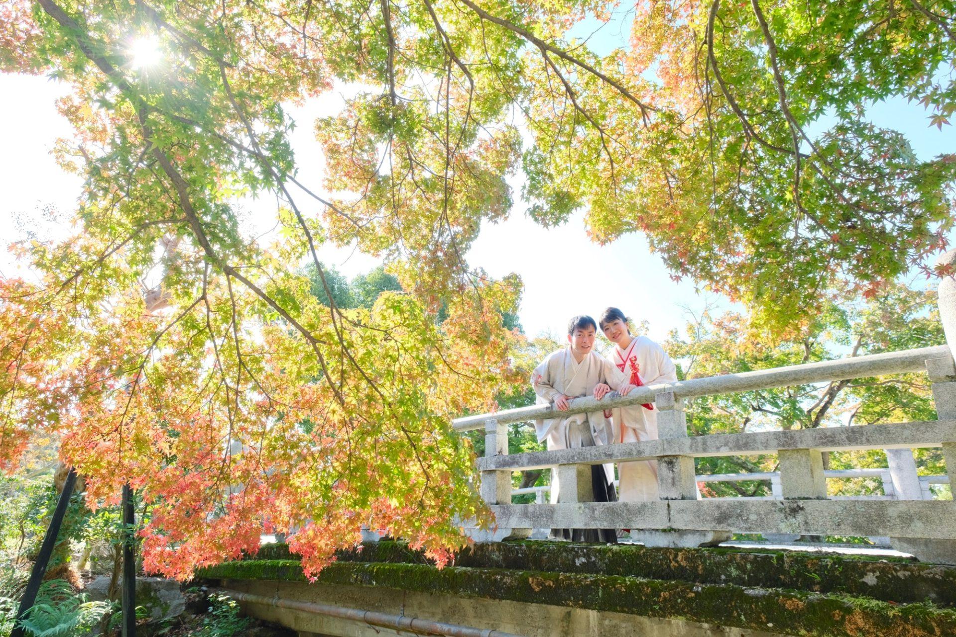 紅葉の奈良公園で和装の前撮りの新婦さん