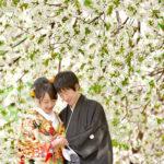 和装フォトウエディングの花嫁