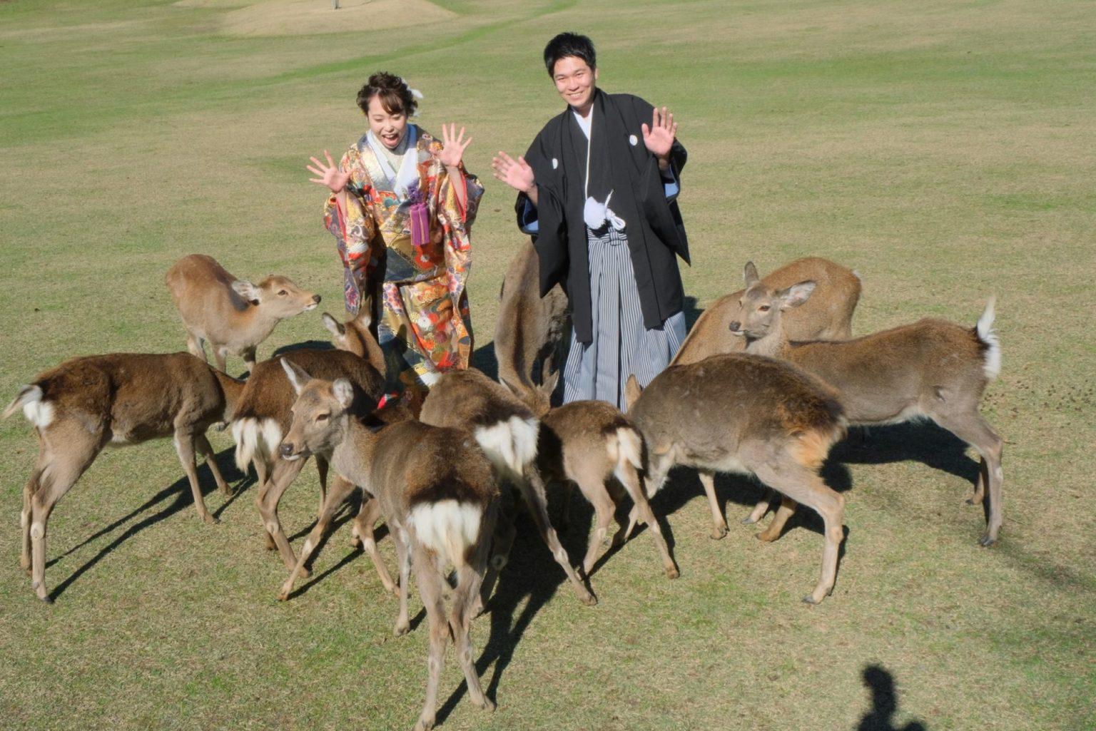 奈良で和装フォトウエディングの花嫁